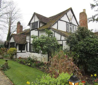 M23 Junction 9 dog walk and dog-friendly country inn, West Sussex - Driving with Dogs