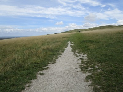 A420 White Horse dog walks, Oxfordshire - Driving with Dogs