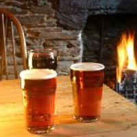 Slapton dog-friendly pub and dog walk, Devon - Dog walks in Devon