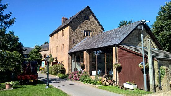 A30 dog-friendly hotel with walks, Somerset - Dog-friendly hotel and dog walks.jpg