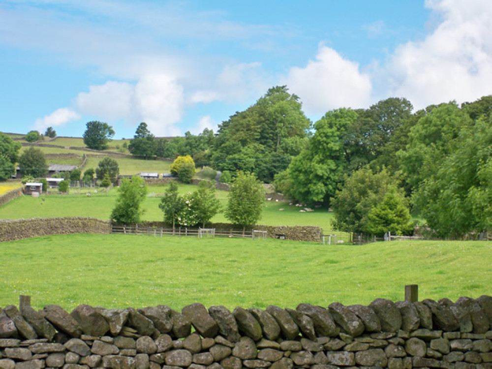 Ribblesdale dog-friendly inn and dog walk, Yorkshire - Dog walks in Yorkshire