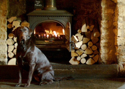 A3400 dog-friendly pub near Shipston, Warwickshire - Driving with Dogs