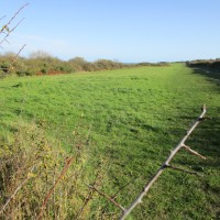 A351 Dog walk and dog-friendly pub near Swanage, Dorset - IMG_6413.JPG