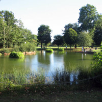 Victoria Park local dog walks, Greater London - Dog walks in Greater London