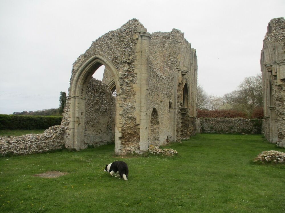 A149 cafe and abbey ruins, Norfolk - A149 dog-friendly ruins and a lovely clean cafe
