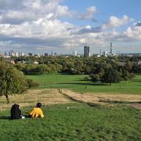 Primrose Hill local dog walks, Greater London - Dog walks in Greater London