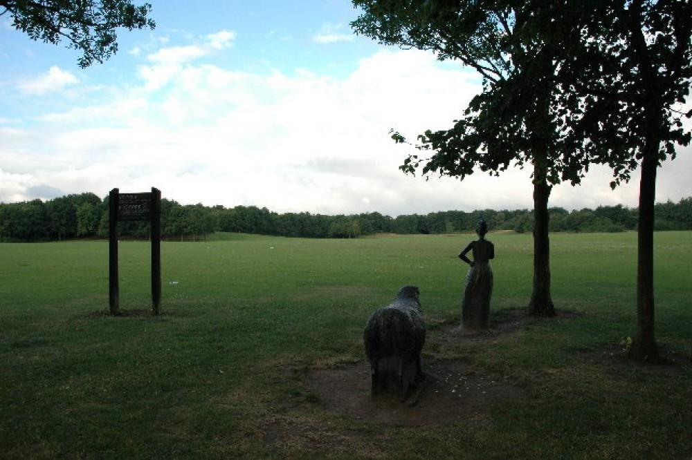 M62 Junction 11 Birchwood Forest Park dog walk, Cheshire - Dog walks in Cheshire