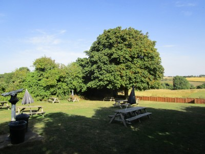 Saddington dog walk and dog-friendly pub, Leicestershire - Driving with Dogs