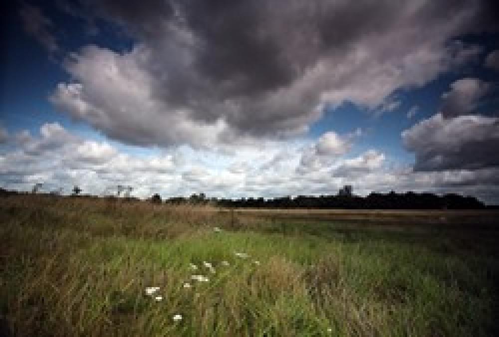 Hanworth Park, Feltham, Greater London - Dog walks in Greater London