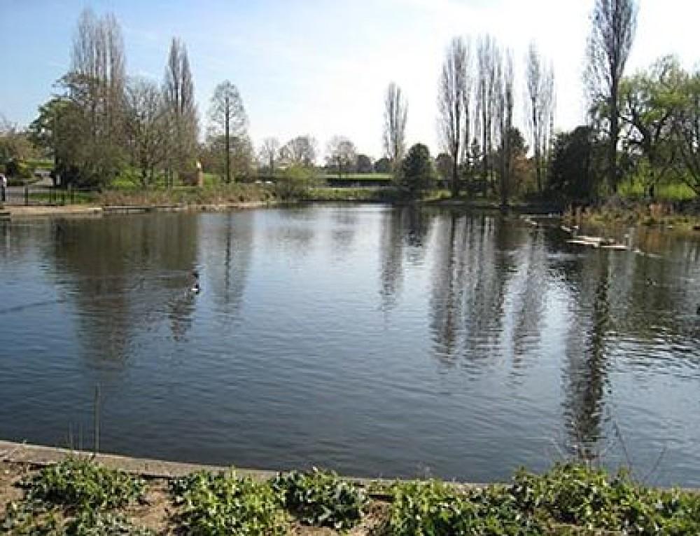 Brockwell Park dog walks, Herne Hill, Surrey - Dog walks in Surrey