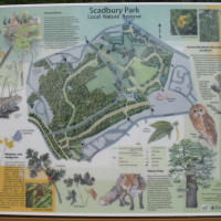 Scadbury Park on-lead local dog walk, Kent - Dog walks in Kent