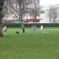 Hyde Park local dog walks, Greater London - Dog walks in Greater London