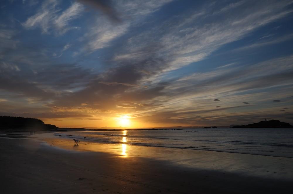 Yellowcraig dog-friendly beach, Scotland - Dog walks in Scotland