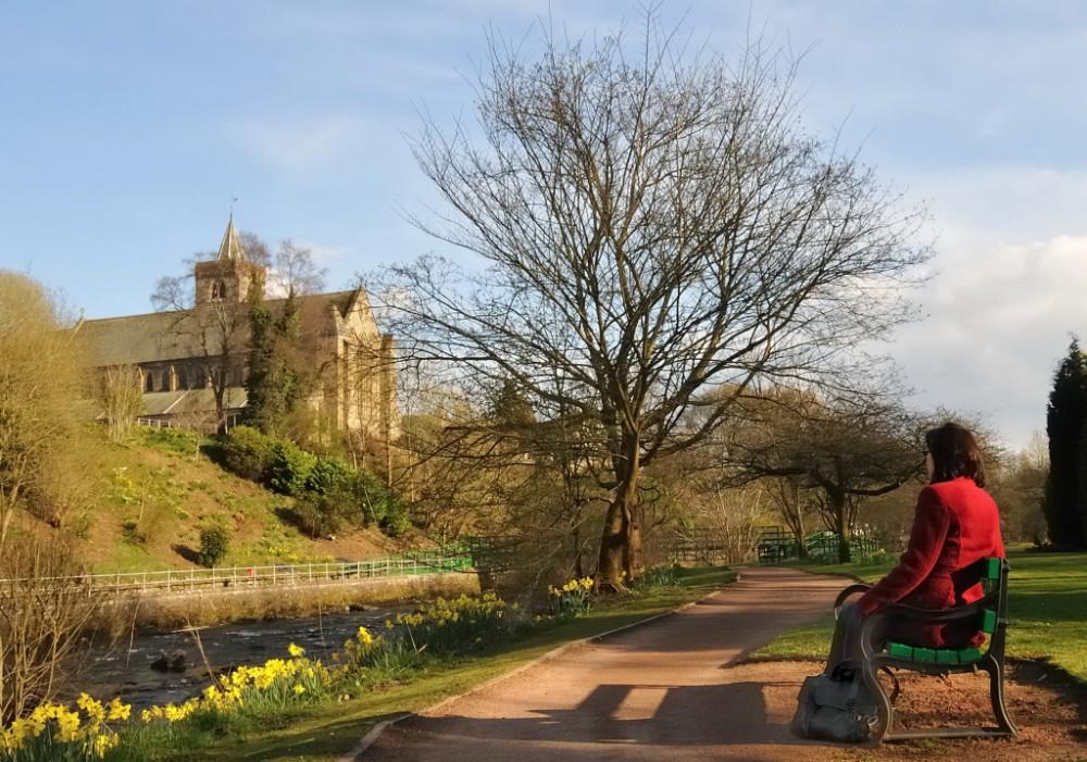 A9 dog walk in Dunblane, Scotland - Dog walks in Scotland