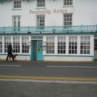 Aberdovey dog-friendly hotel, Wales - Dog-friendly hotel, Wales