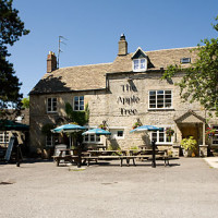 A435 dog walk and dog-friendly pub near Cheltenham, Gloucestershire - Dog walks in Gloucestershire