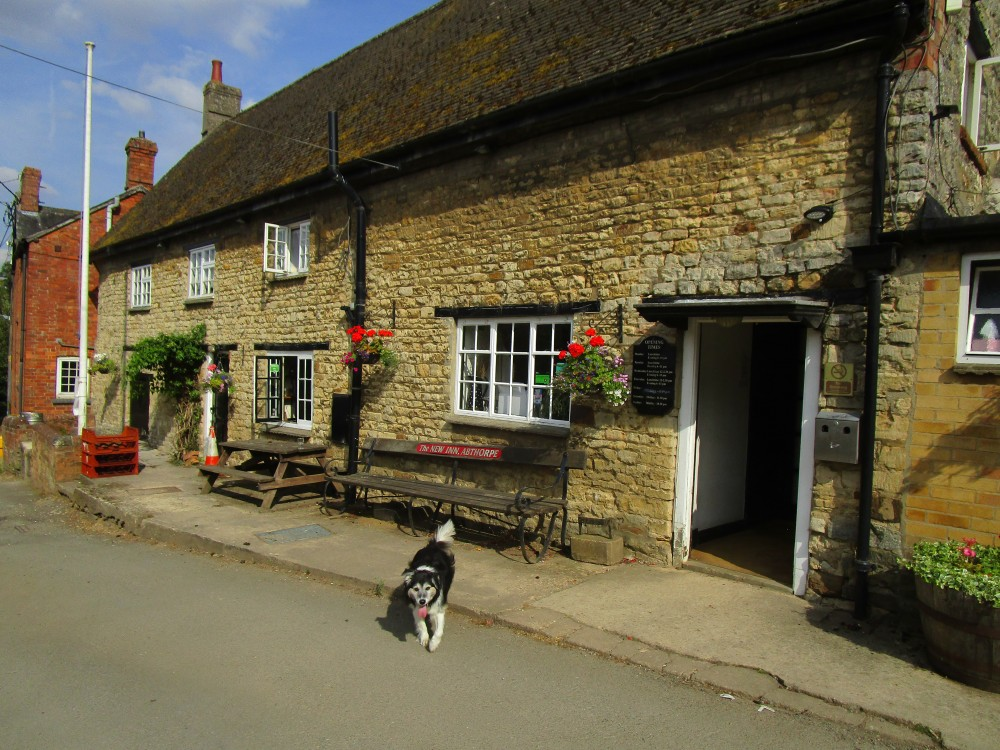 Abthorpe dog-friendly pub and dog walk, Northamptonshire - Dog walk and dog-friendly pub Northamptonshire