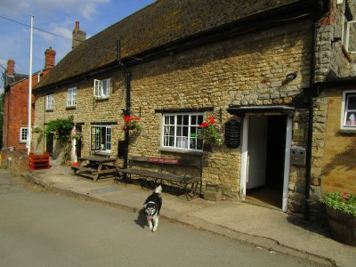 Abthorpe dog-friendly pub and dog walk, Northamptonshire - Driving with Dogs