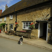 A43 dog-friendly pub and dog walk near Towcester, Northamptonshire - Dog walk and dog-friendly pub Northamptonshire