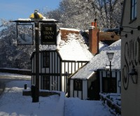 Swan Inn dog-friendly pub, Newtown, Berkshire - Dog walks in Berkshire