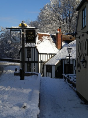 Swan Inn dog-friendly pub, Newtown, Berkshire - Driving with Dogs