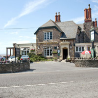 M5 Junction 20 dog-friendly pub and dog walk in Clevedon, Somerset
