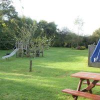A35 dog-friendly pub near Axminster, Devon - Devon dog-friendly pub and dog walk