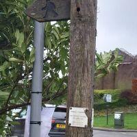 Sett Valley Trail and Moorland Road dog walk, Derbyshire