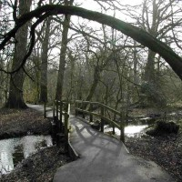 M25 Junction 19 dog walk near Watford, Hertfordshire - Dog walks in Hertfordshire