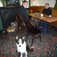 Macclesfield area dog-friendly pub and dog walk, Cheshire - Dog walks in Cheshire