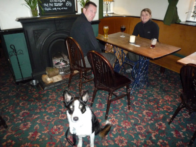 Macclesfield area dog-friendly pub and dog walk, Cheshire - Driving with Dogs