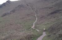 Bolberry dog walks, Devon - Dog walks in Devon