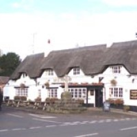 A444 dog-friendly pub and dog walk, Warwickshire - Dog walks in Warwickshire