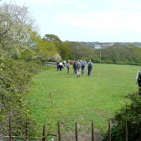 The Duver dog walk, Isle of Wight - Dog walks on the Isle of Wight