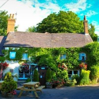 A339 dog-friendly pub, Hampshire - Hampshire dog-friendly pub and dog walk