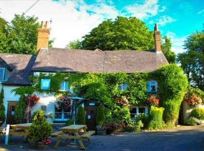 A339 dog-friendly pub, Hampshire - Driving with Dogs