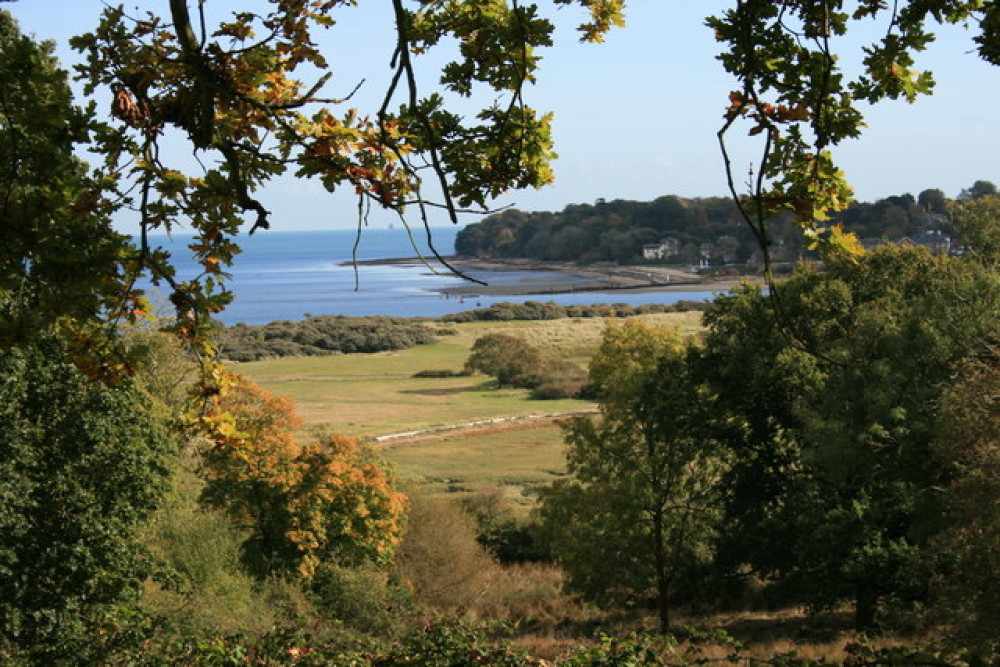 The Duver dog walk, Isle of Wight - Dog walks on the Isle of Wight