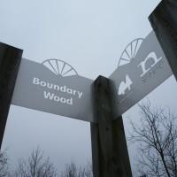Boundary Wood dog walks, Nottinghamshire - Image 1