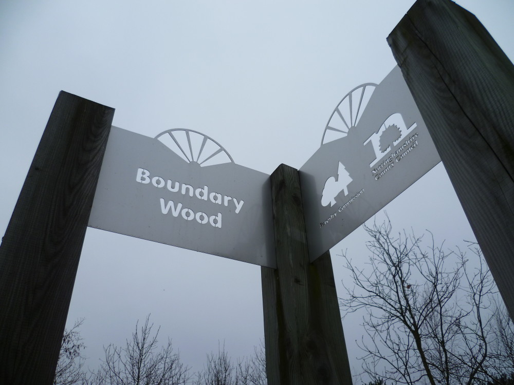 Boundary Wood dog walks, Nottinghamshire - Image 1