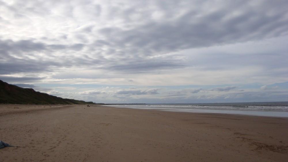Saltburn dog-friendly beach, North Yorkshire - Dog walks in Yorkshire