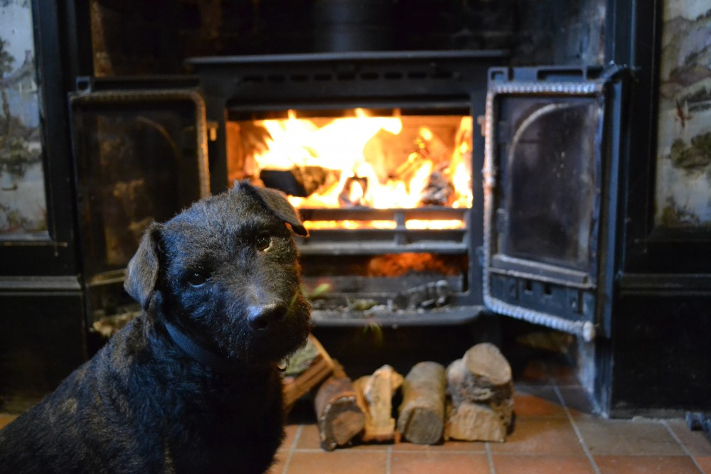 Denham dog-friendly pub, Buckinghamshire - Dog walks in Buckinghamshire