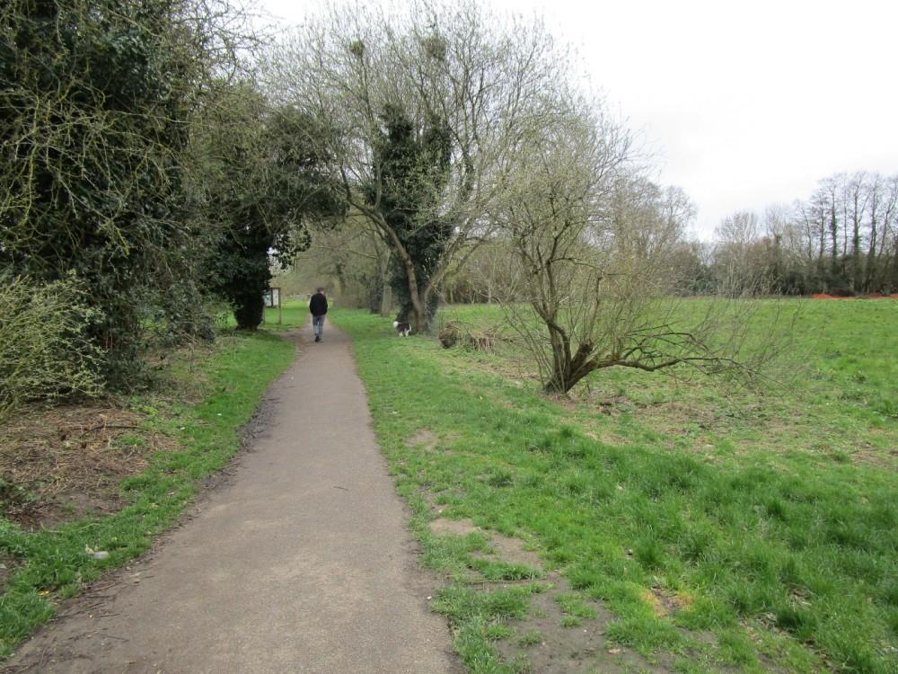 Blackwater dog walk, Berkshire - Berkshire dog walks.JPG