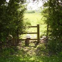 M4 - Chieveley Services with dog walk, Berkshire - Berkshire dog walk