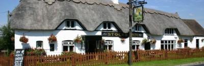 Furzehill dog-friendly pub, Dorset - Driving with Dogs