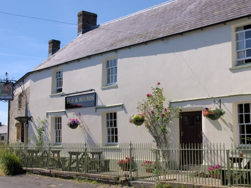 A37 Lankham Bottom dog walk and pub, Dorset - Dorset dog-friendly pub and dog walk