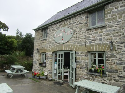 Coast dog walk and dog-friendly cafe, Wales - Driving with Dogs
