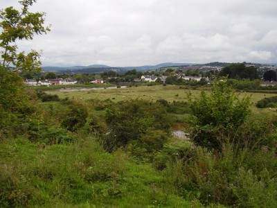 M4 Junction 24 dog walk and dog-friendly pub near Caerleon, Gwent, Wales - Driving with Dogs