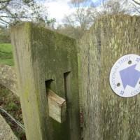 A21 Castle dog-walk and cafe, Kent - Kent dog-friendly pubs with dog walks.JPG