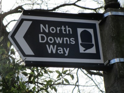 Stowting dog walk and dog-friendly pub, Kent - Driving with Dogs
