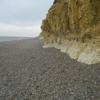 A149 dog-friendly beach walks, Norfolk - Norfolk dog-friendly beaches.JPG
